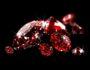Рубин, дарующий любовь и удачу