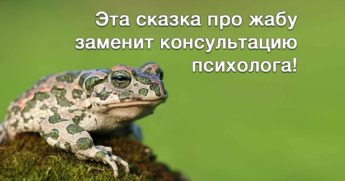 Сказка про жабу