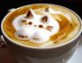 8 важных фактов о кофе, которые должен знать каждый кофеман