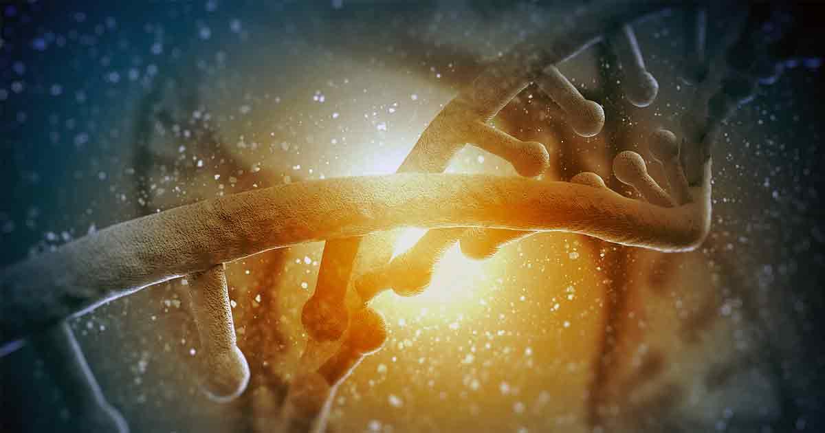 По меньшей мере 500 генов человека становятся более активными после его смерти