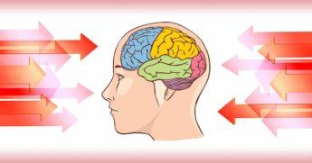 10 популярных привычек, которые вредят нашему мозгу