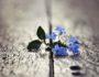 20 вещей, которые следует помнить в тяжелые периоды жизни
