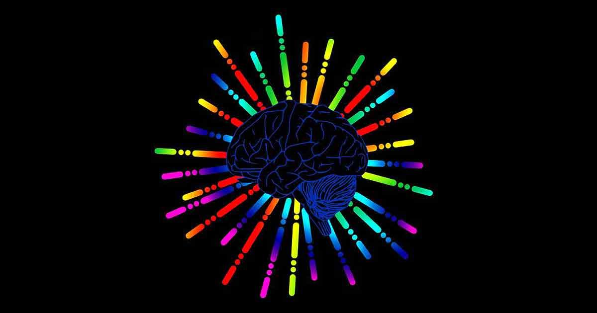 Полезные мысли: как научить свой мозг думать по-другому?