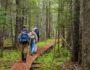 Ученые объясняют, как пешие прогулки изменяют работу мозга
