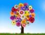 Как достичь гармонии с собой и получать от жизни радость?