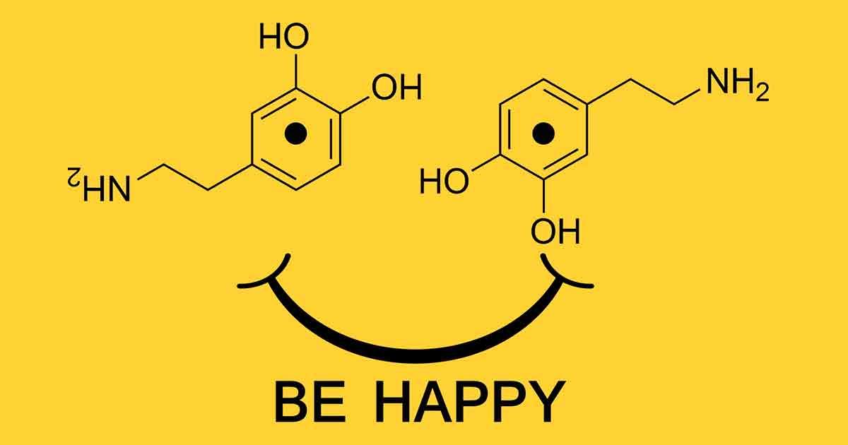 Дофамин — важное вещество для поддержания нашего благополучия